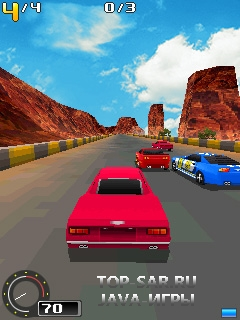 3D Racing Evolution